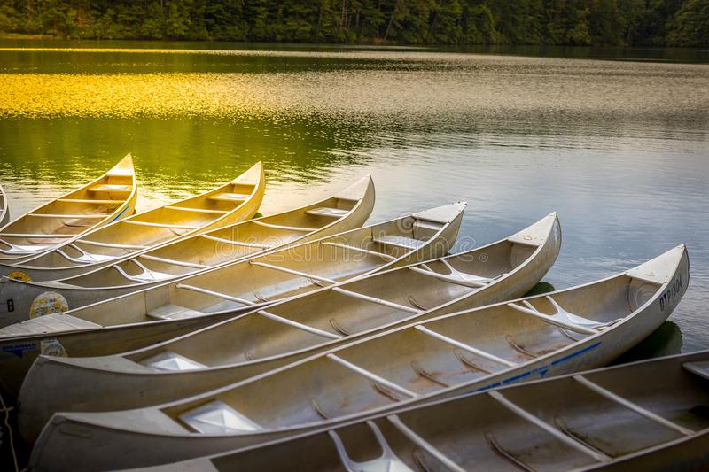 Ready to Row. Canoes lined up and ready to sail away at Lake Lanier, Georgia royalty free stock image
