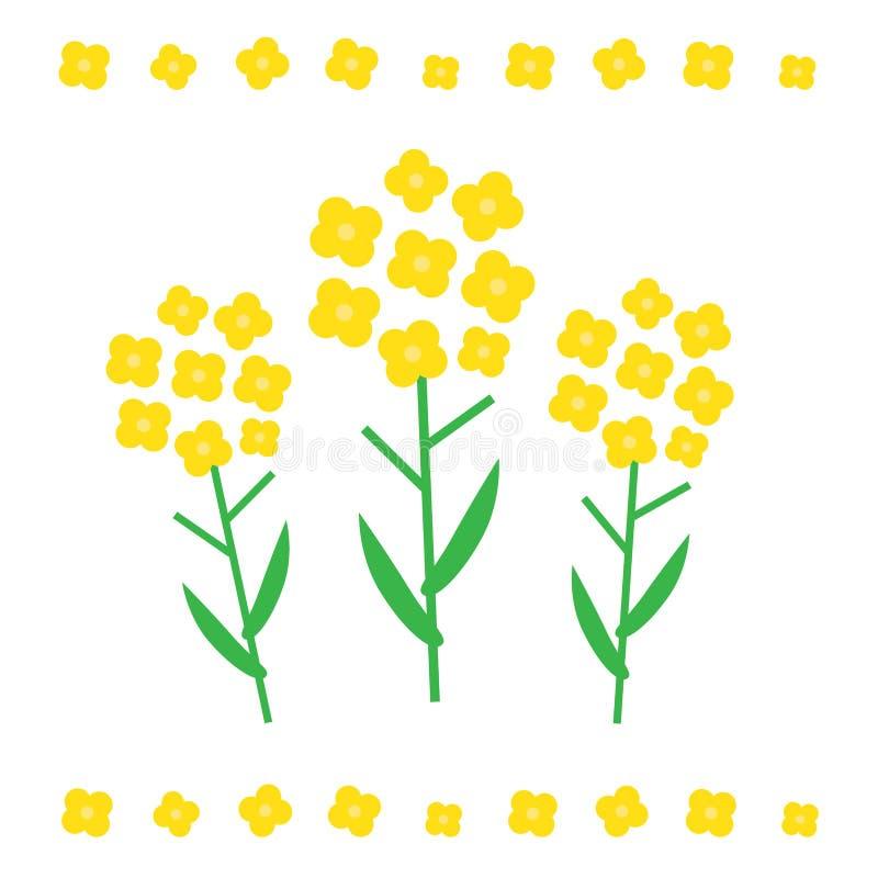 Canolablommaillustration Canolablommabegrepp i plan stil Canola blommar symboler vektor illustrationer