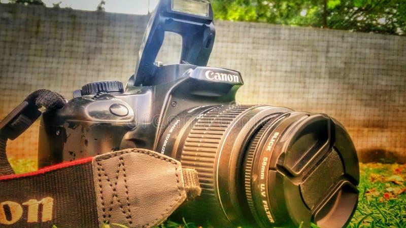 canon photographie stock