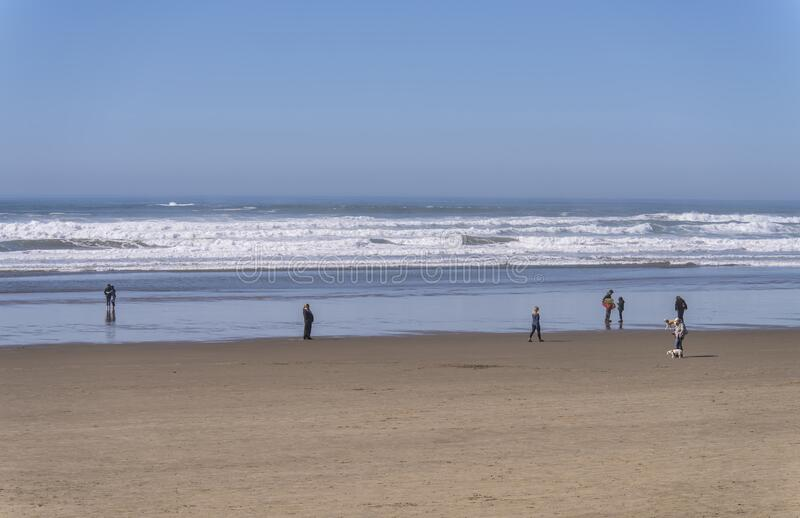 Stroll on a beach at the Oregon Coast. royalty free stock images