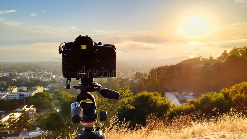 Canon 5D fläckdropp på en Manfrotto tripod på grisslybjörnmaximumet i Berkel arkivbilder