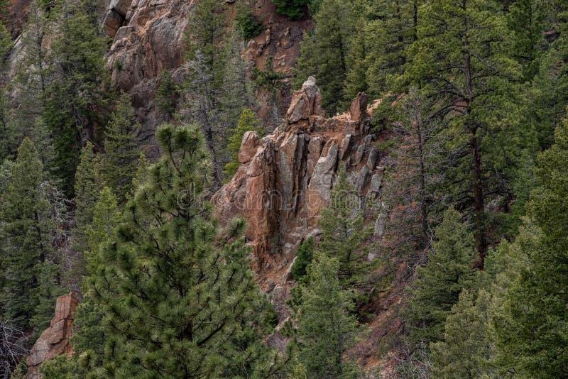 Canon del norte Colorado Springs del barranco de Cheyenne fotos de archivo