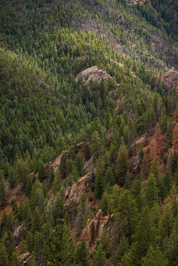 Canon du nord Colorado Springs de canyon de Cheyenne images stock