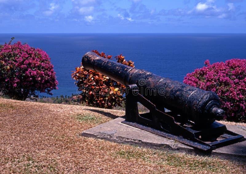 Canon Scarborough, Tobago. fotografering för bildbyråer