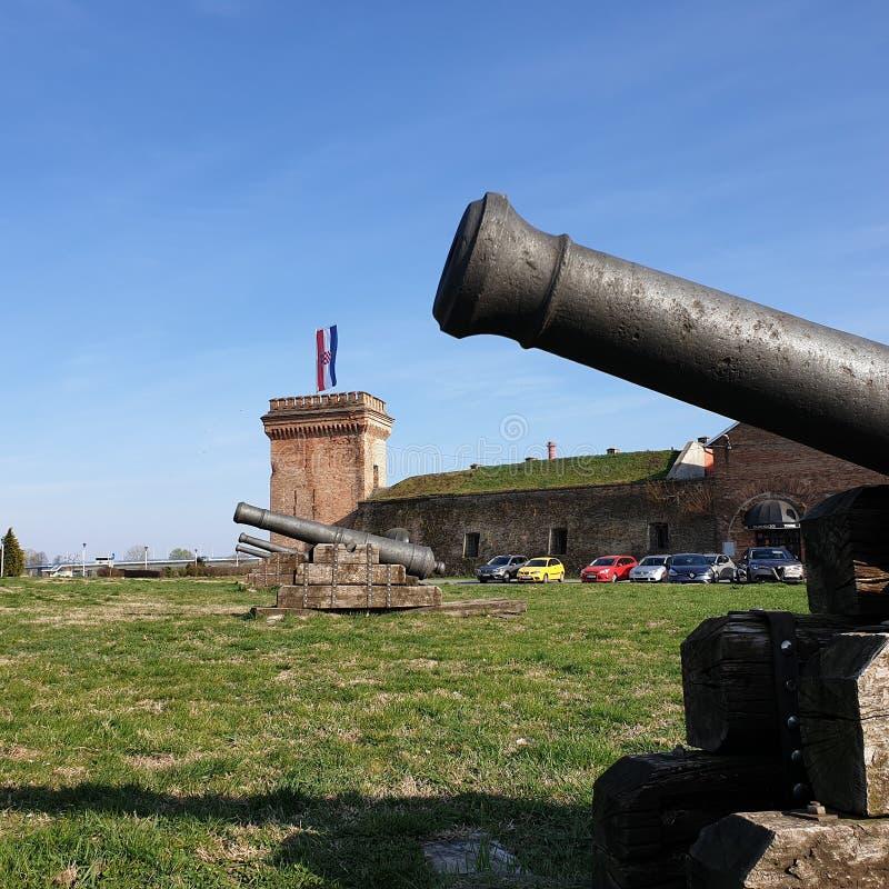 Canons près du château de cru photos libres de droits