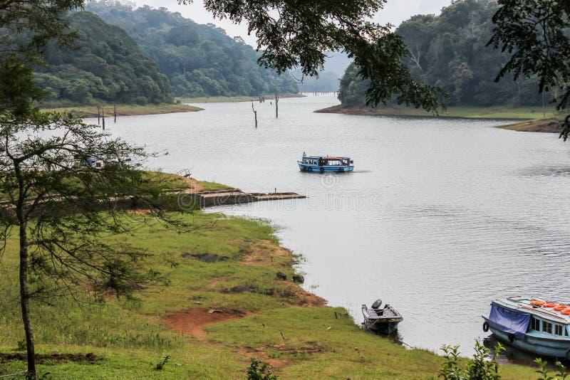 Canottaggio della riva del fiume della foresta fotografia stock