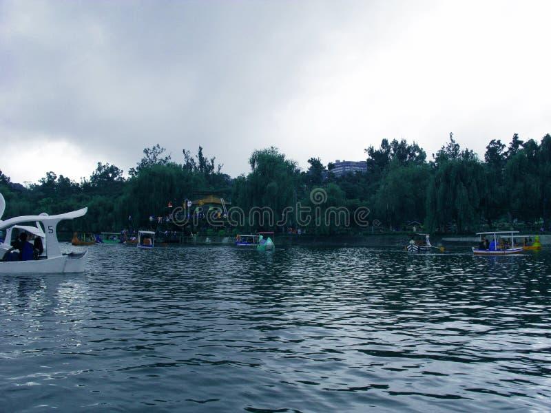Canottaggio di primo mattino a Burnham Park, Baguio, Filippine immagine stock libera da diritti
