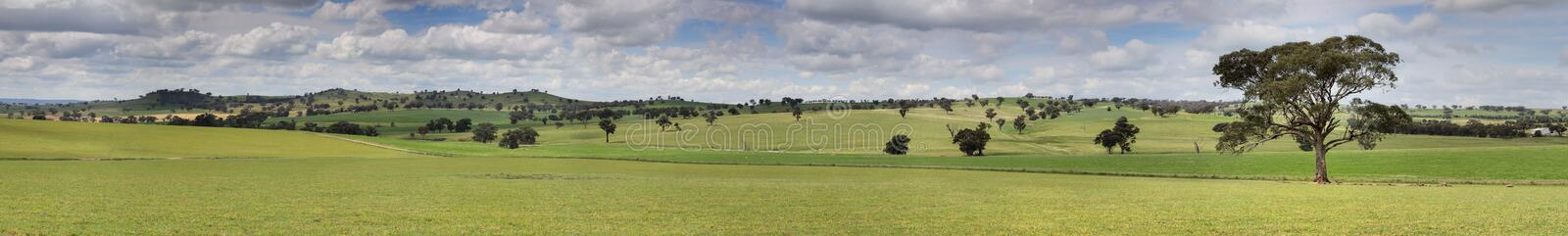 Canowindra Pastoral Countryside Landscape Panorama stock photo