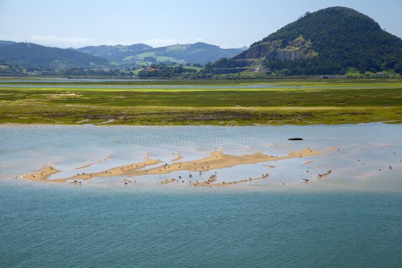 Cantabria Santona fjärd arkivbilder