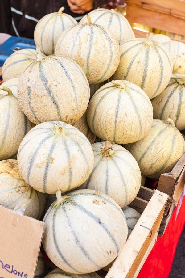 Cantaloup de melons photos stock