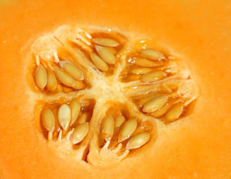 Download Cantaloupe foto de stock. Imagem de fruta, alaranjado, fleshy - 106244