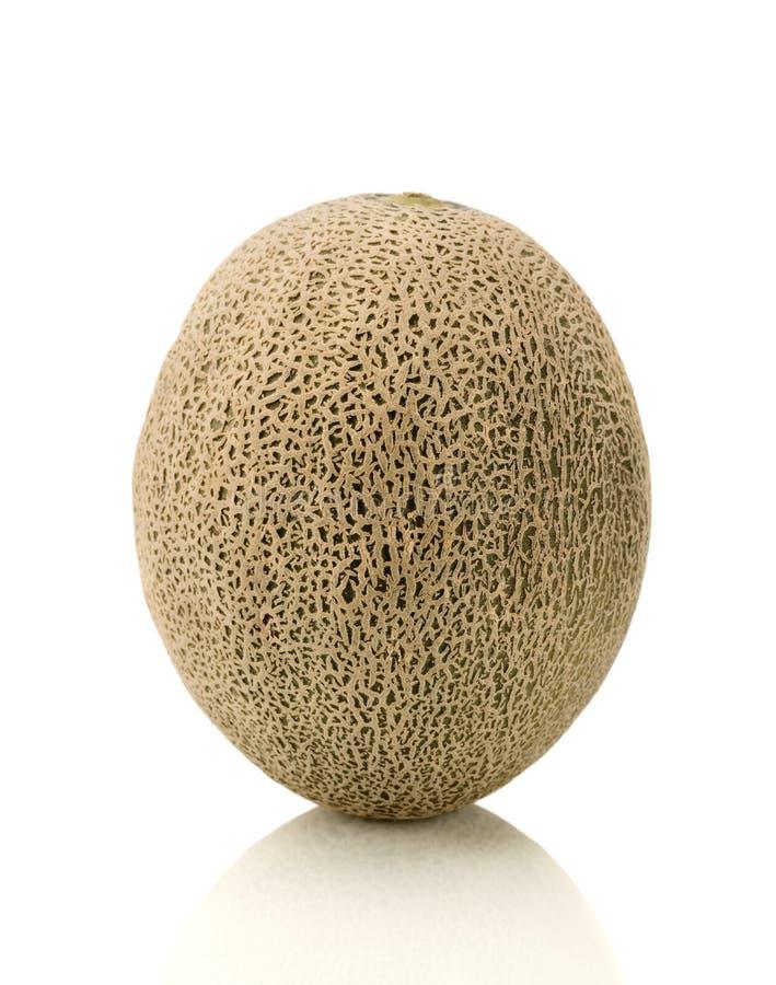 Cantaloupe. Single cantaloupe (muskmelon) isolated on white background royalty free stock photos