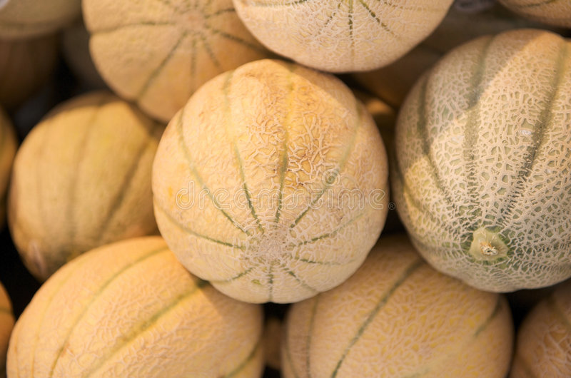 Cantaloupe em uma tenda do mercado dos fazendeiros fotografia de stock