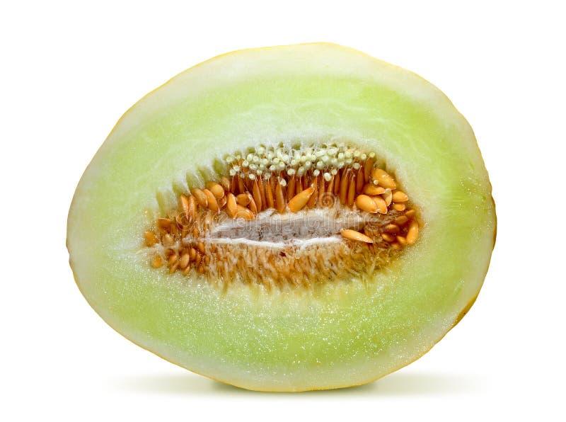 Download Cantaloupe melon stock photo. Image of organic, refreshing - 17416974