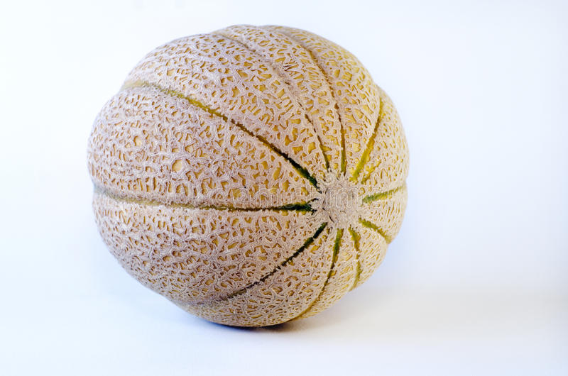 Download Cantaloupe melon stock photo. Image of delicious, colorful - 29289480