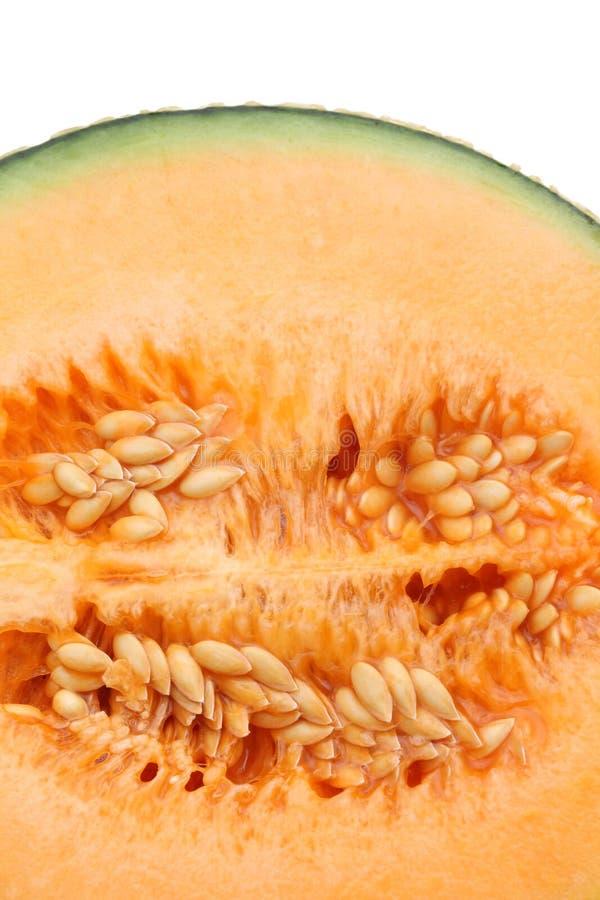 Cantaloupe melon. Close up of ripe cantaloupe melon stock photos