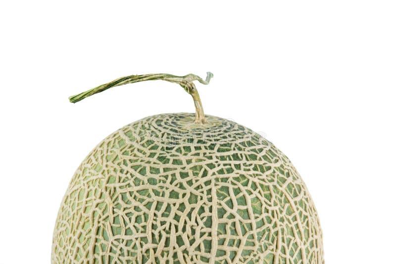 Cantaloupe melon isolate. On a white background royalty free stock photo