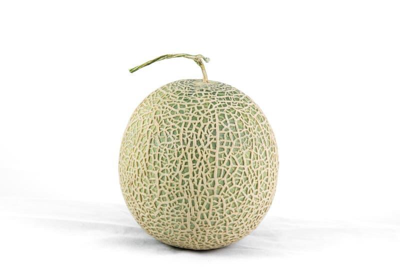 Cantaloupe melon isolate. On a white background stock image