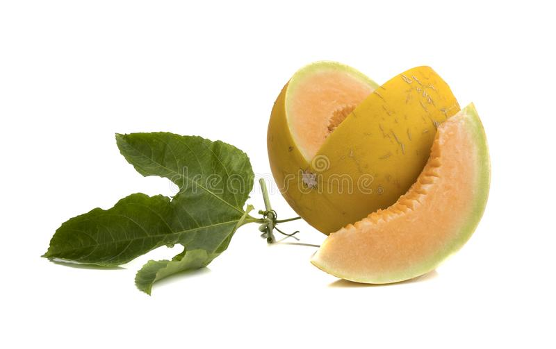 cantaloupe melon isolated on white royalty free stock image