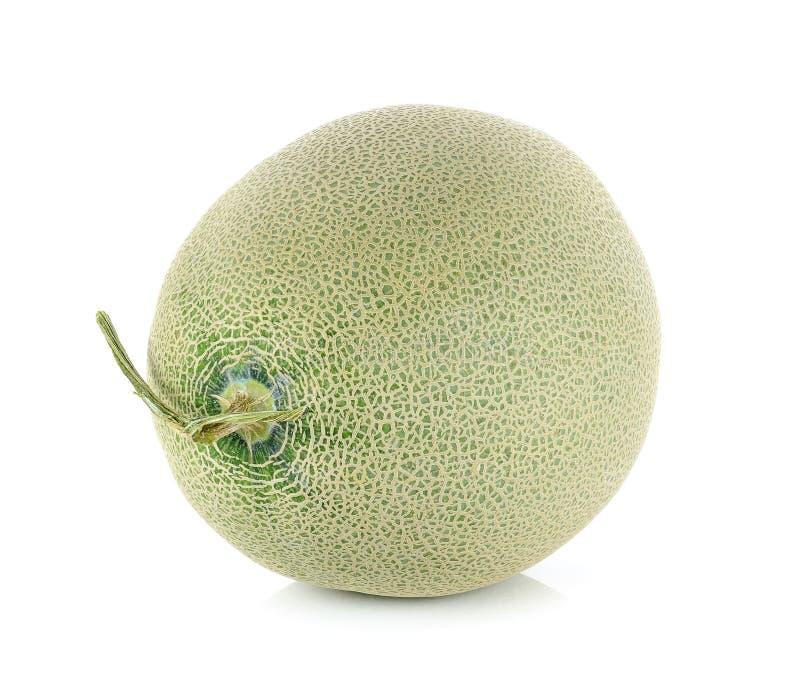 Cantaloupe melon isolated on the white background.  stock photography