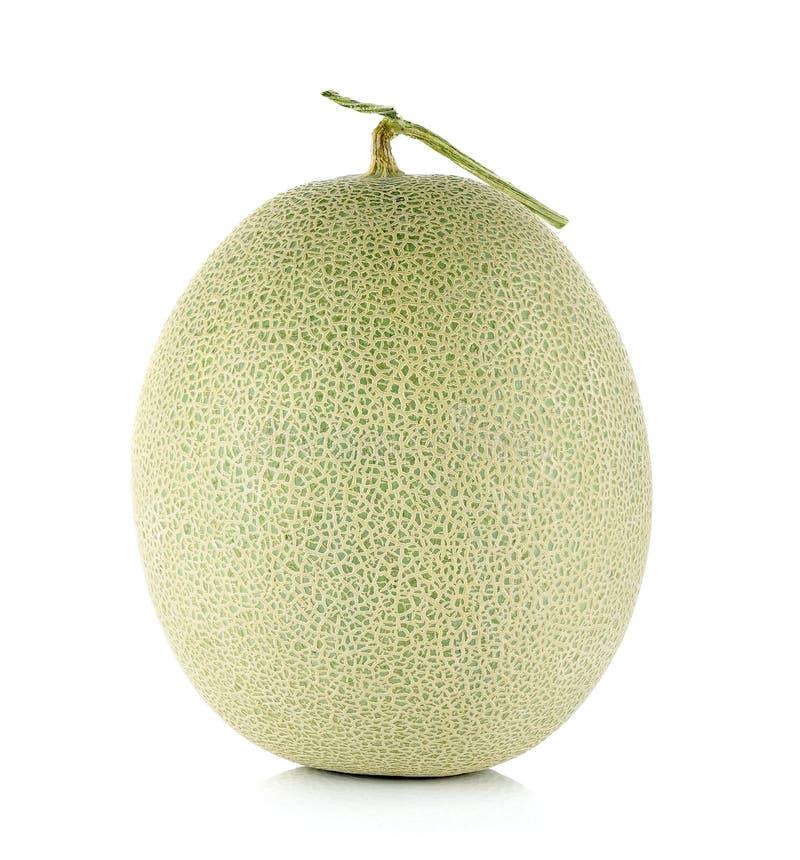 Cantaloupe melon isolated on the white background.  stock photos