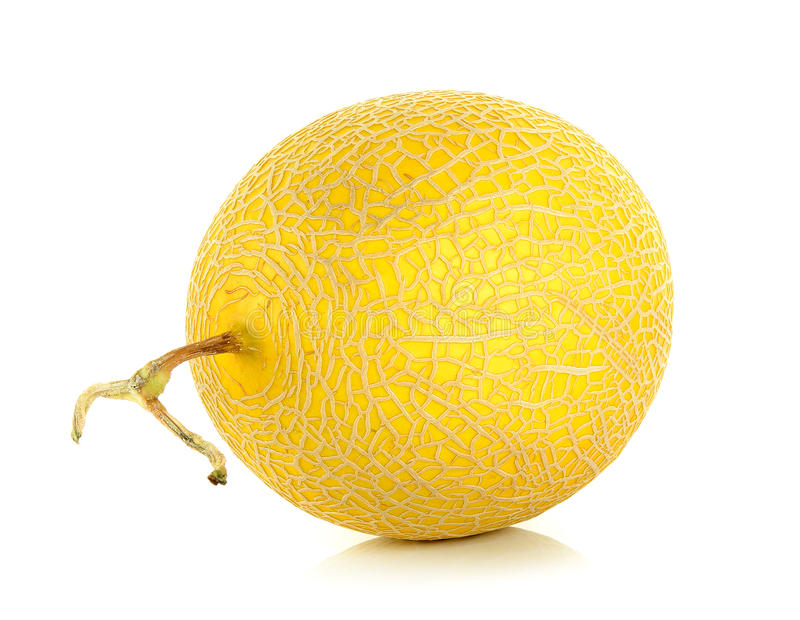 Cantaloupe melon isolated on the white background.  royalty free stock image