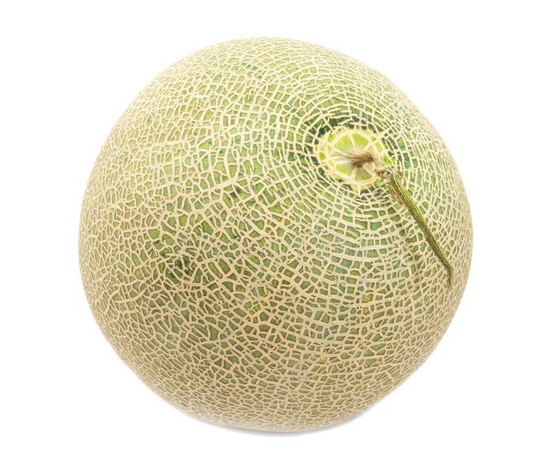 Cantaloupe melon on white background.  royalty free stock photo
