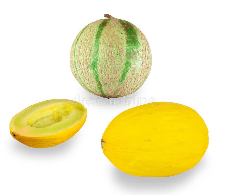 Cantaloupe melon and yellow melon on white background stock photo