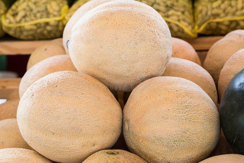 Cantaloupe For Sale At Farmers Market stock photo