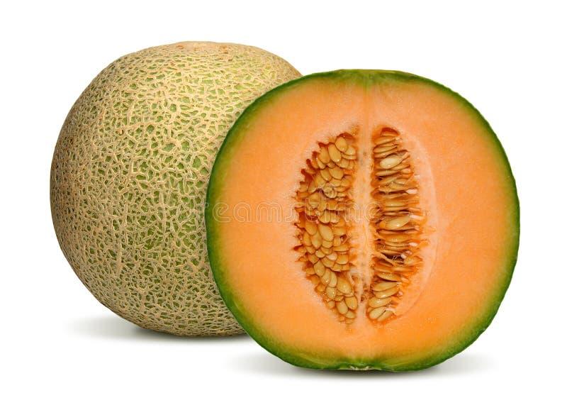 cantaloupemelon arkivbilder