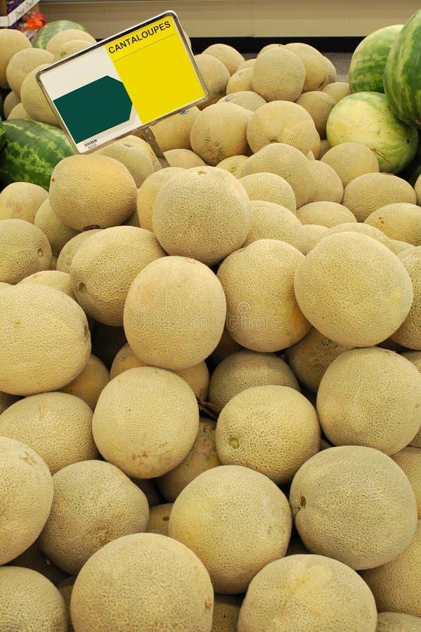 Free Cantaloupes 01 Royalty Free Stock Image - 1756716