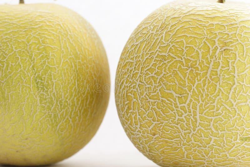 Download Cantaloupes stock image. Image of cantaloup, rockmelon - 127851