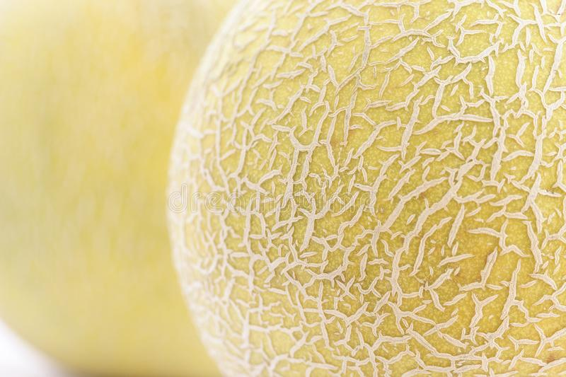 Cantaloupes Free Stock Photo