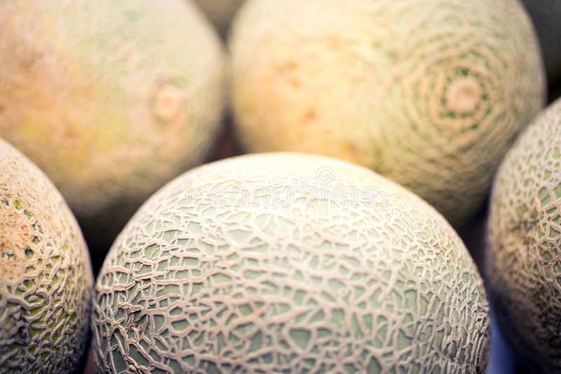 Cantaloupes stock images