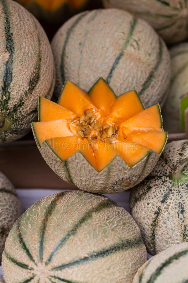 Free Cantaloupes Melons Royalty Free Stock Photography - 54941617