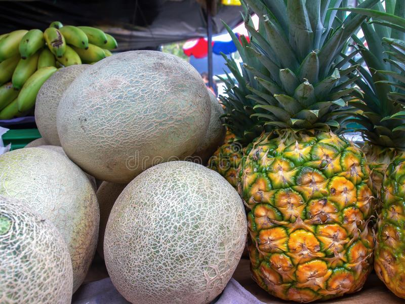 Cantaloupes and pineapples on a stand royalty free stock images