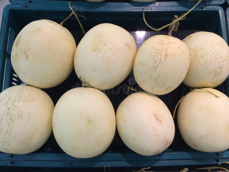 Cantaloupmelonvit royaltyfria foton
