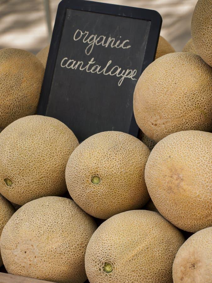Download Cantalupo imagem de stock. Imagem de fazenda, nave, fruta - 26504207