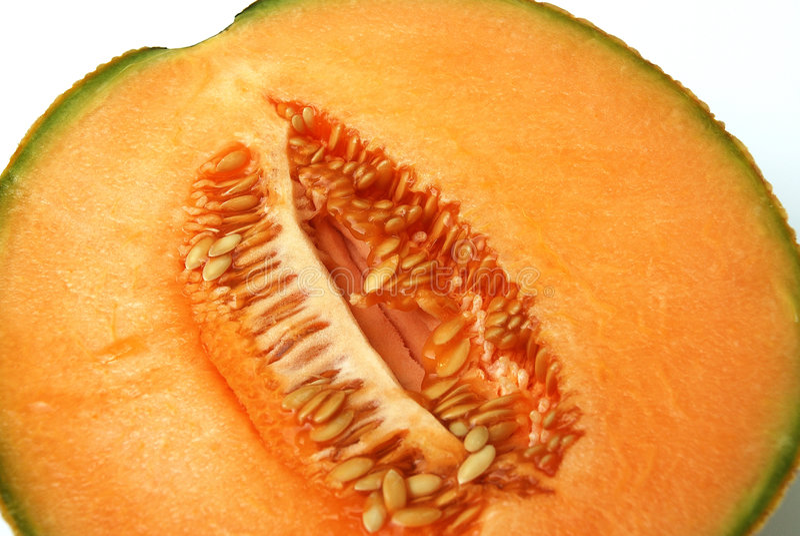 Cantalupo fotografie stock