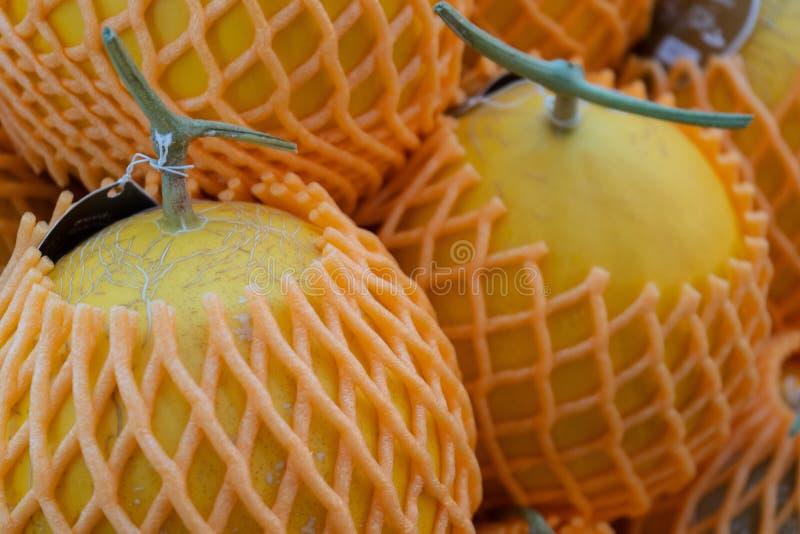 Cantalupo de la fruta del melón con la red de la espuma en mercado de la fruta foto de archivo