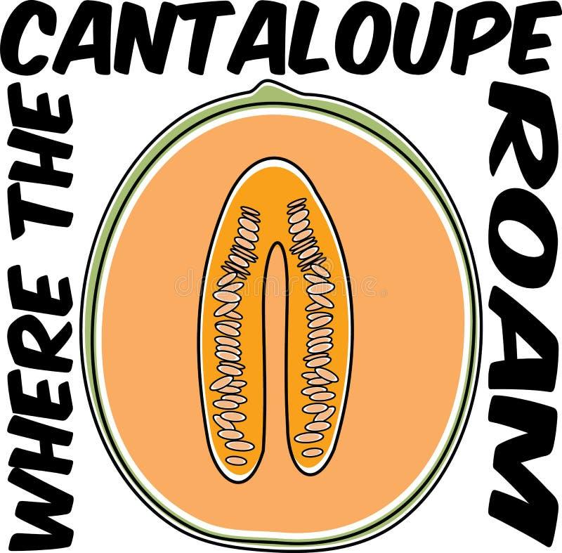 Cantalupo della frutta di vettore in arancia sul manifesto divertente dell'illustrazione di cibo sano bianco royalty illustrazione gratis
