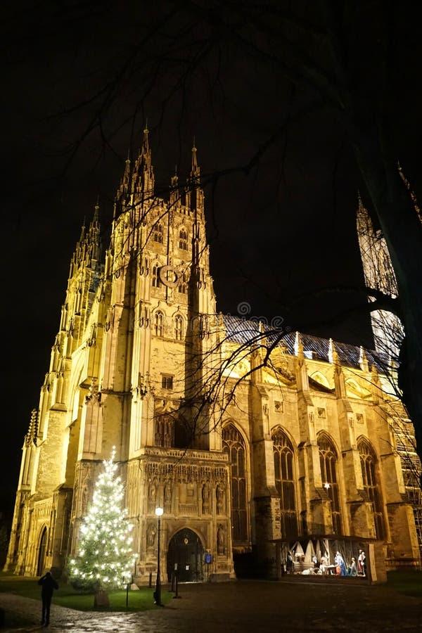 Canterbury domkyrka på natten med julgranen och julkrubban royaltyfria foton