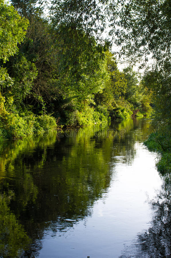 Canterbury Old Stour River royalty free stock photo