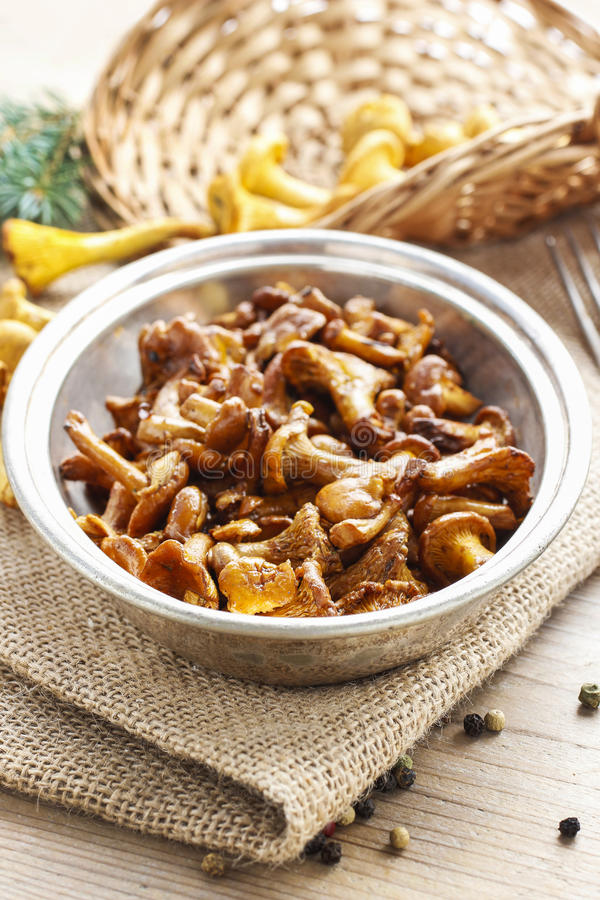 Download Cantharellus Cibarius, Commonly Known As The Chanterelle Stock Image - Image: 43502789