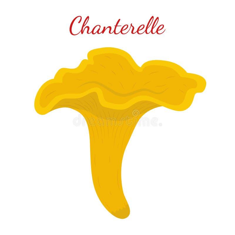 Cantharelpaddestoel Organisch eetbaar voedsel Beeldverhaal vlakke stijl V vector illustratie