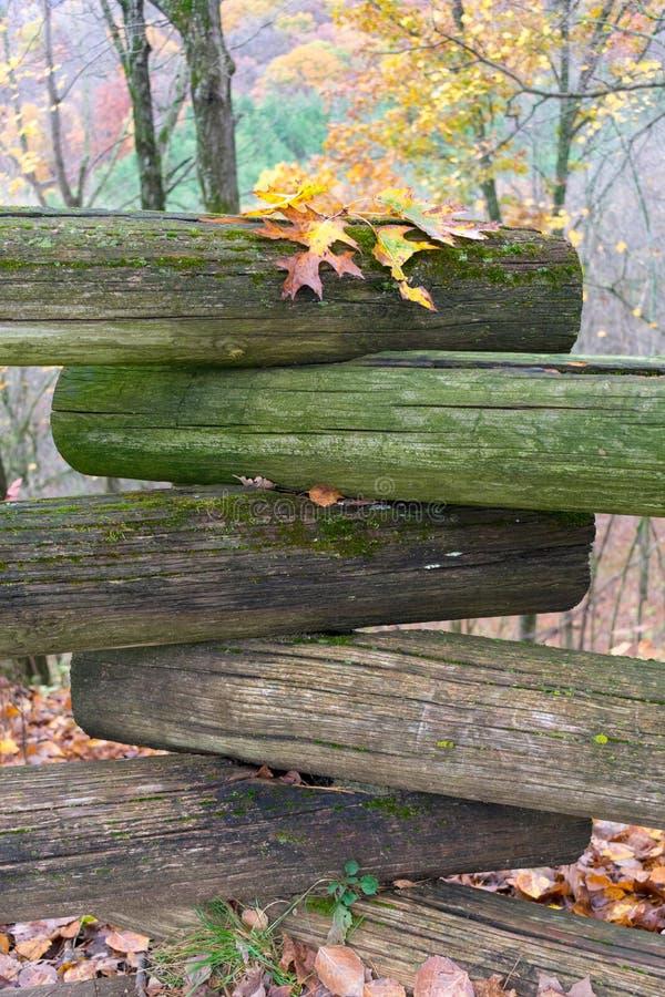 Canto da cerca do log com as folhas coloridas da queda imagens de stock royalty free