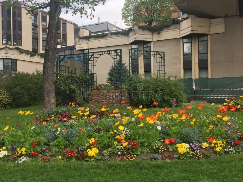 Canto da flor e centro de jardim imagem de stock royalty free