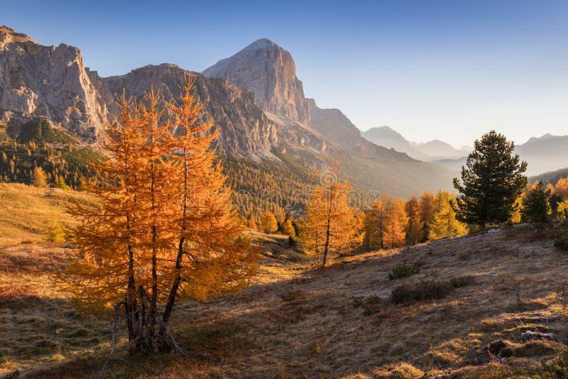 Canto de la montaña de Tofana di Rozes Región Trentino Alto Adige, el Tyrol del sur, Véneto, Italia montañas de la dolomía imagen de archivo libre de regalías
