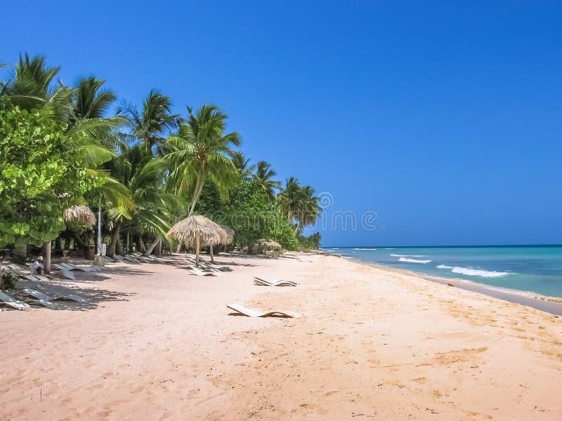 Canto de la Playa Caribbean. Coconut palms on popular Canto de la Playa in Saona Island, Parque Nacional del Este, East National Park, Dominican Republic stock image
