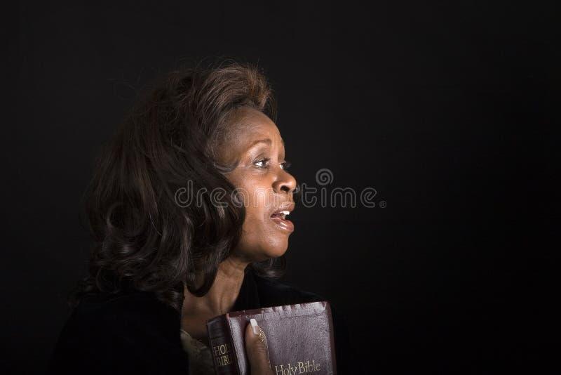 Canto de LR1 Diane foto de stock royalty free